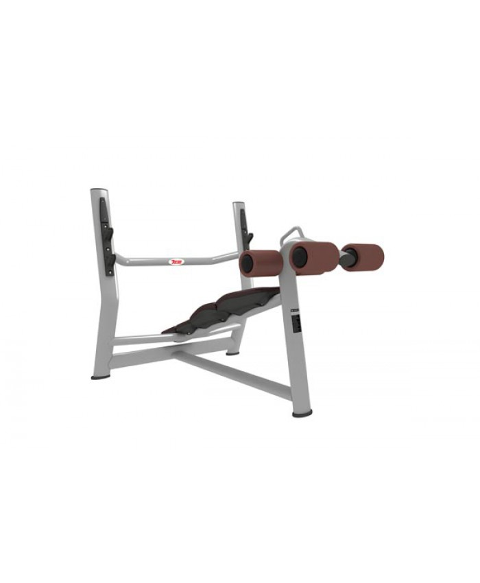 DECLINE BENCH (LUXURY) MT-229